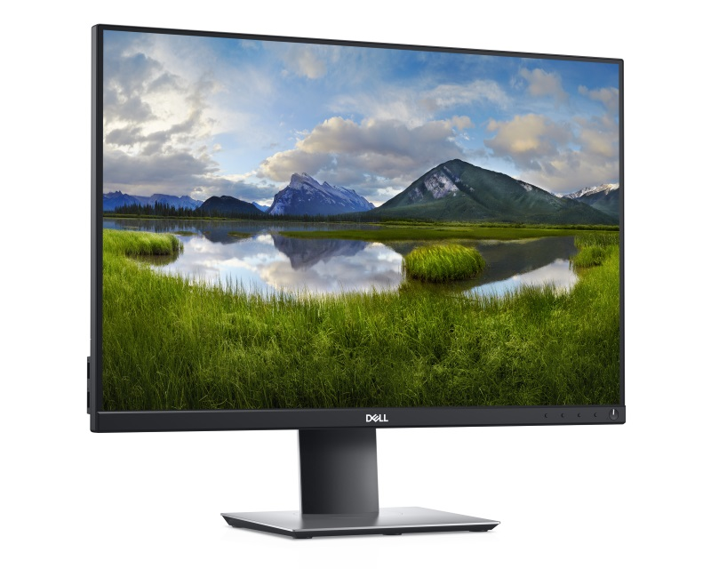 "DELL                           24"" P2421 Professional IPS monitor"